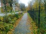 Набережная Клязьмы осенью